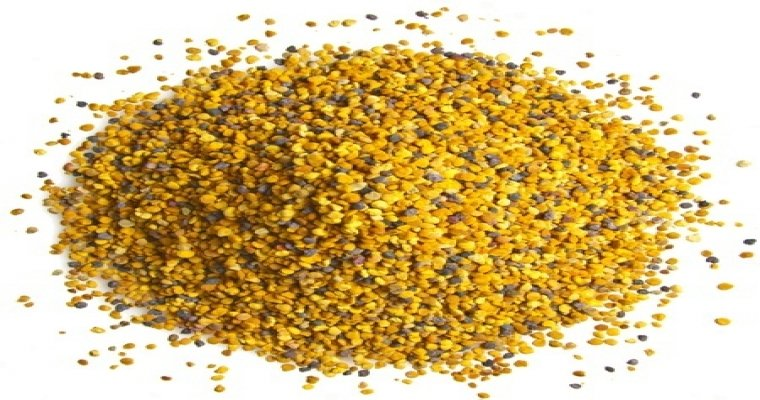 Bee Pollen – Everything You Need To Know