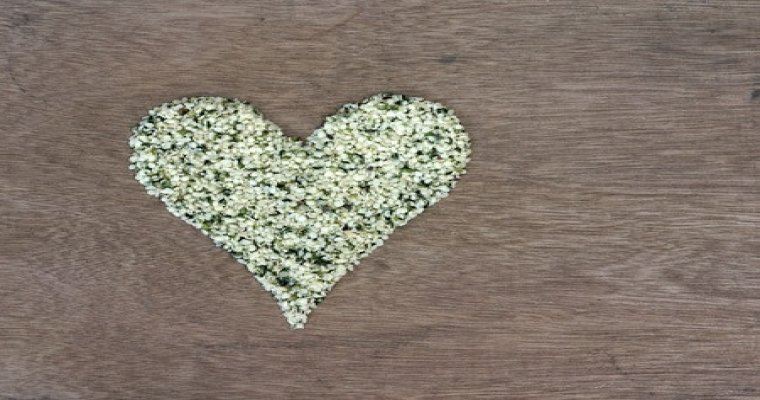 Hemp Seeds – Everything You Need to Know